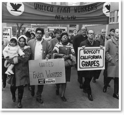 Canadian supporters of the UFW